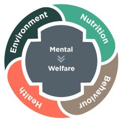 Workshop - How to Assess Welfare: the Five Domains Model